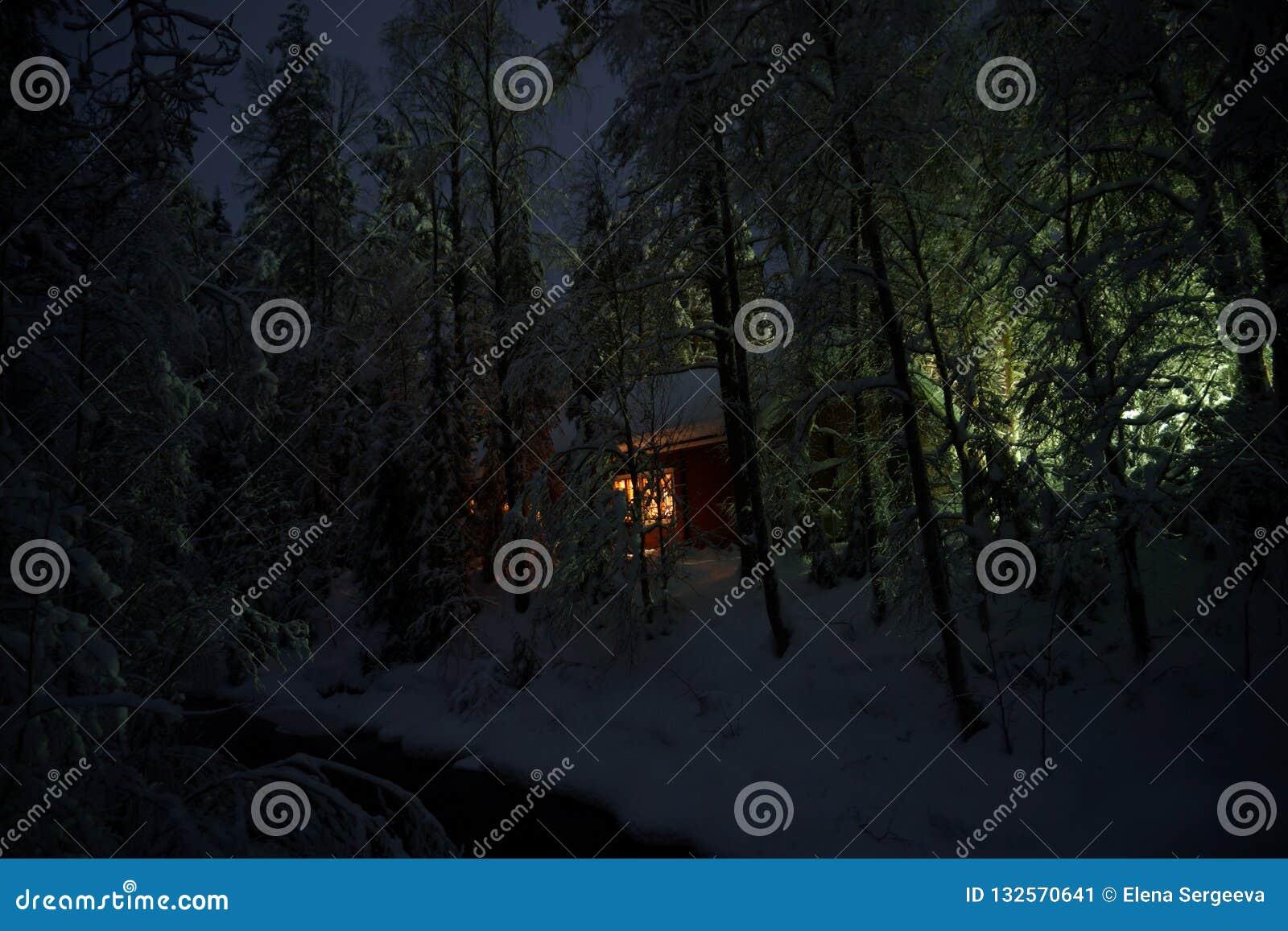 议院在夜冬天森林里