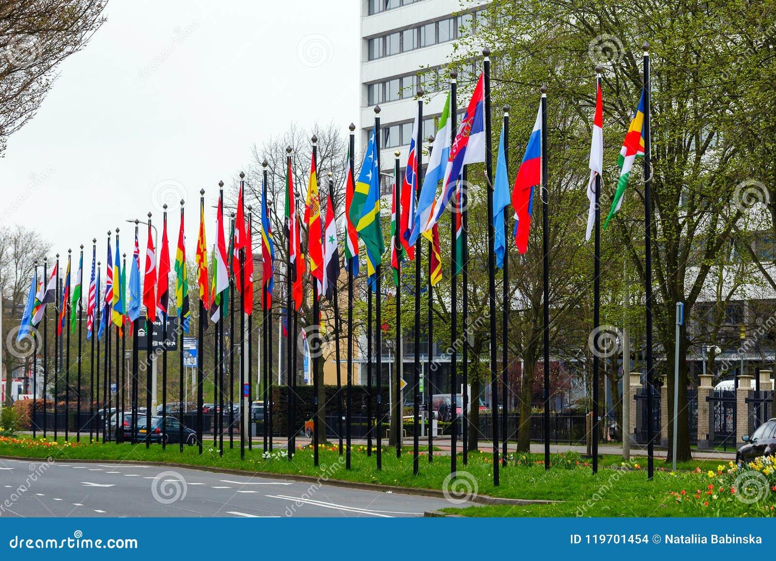 许多另外旗子街道欧洲成员联合大厦国家国家路线草开花绿色类型海牙