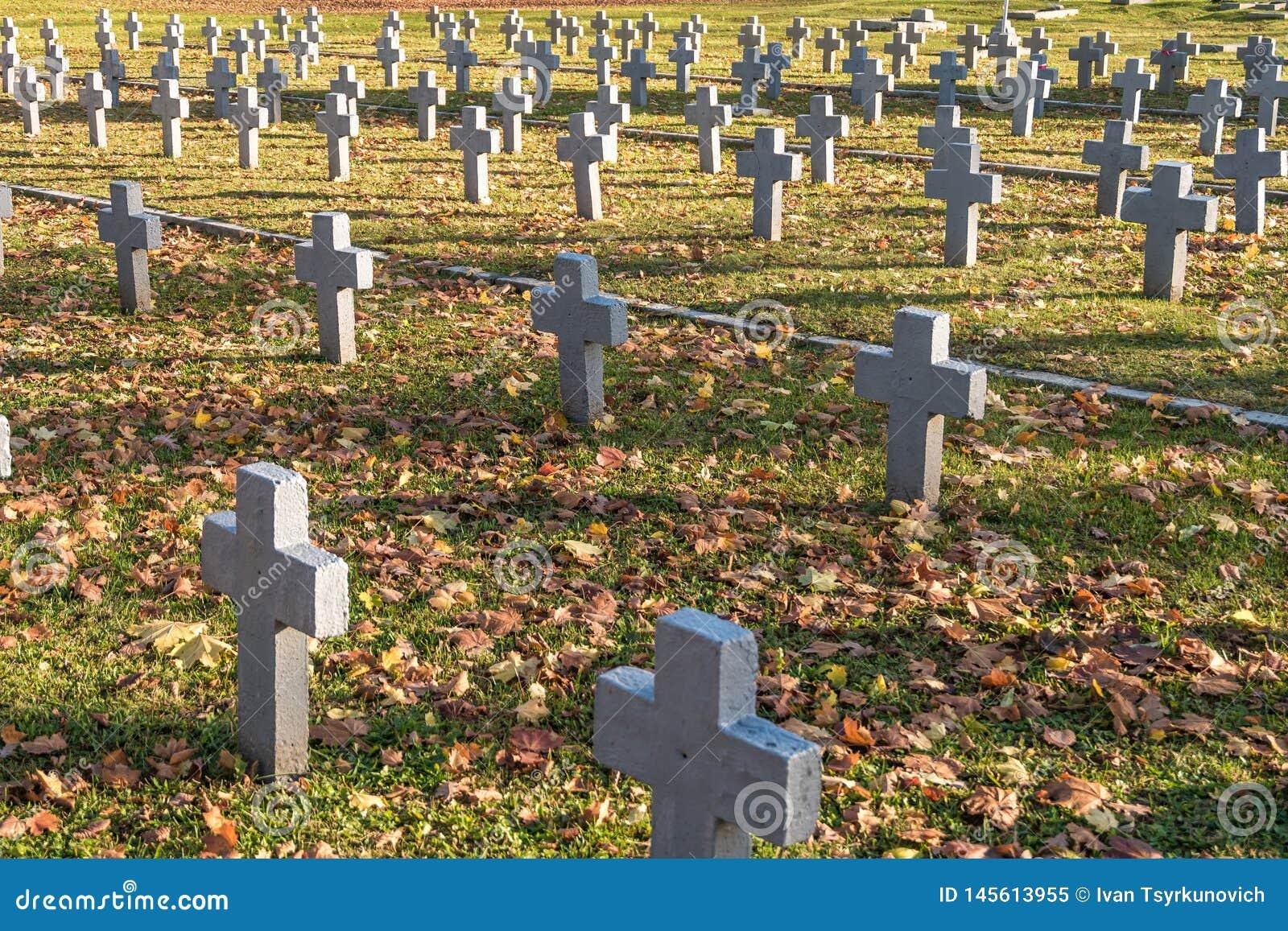 许多相同灰色十字架在波兰军事公墓 生活秋天和日落  会众和独立的奋斗