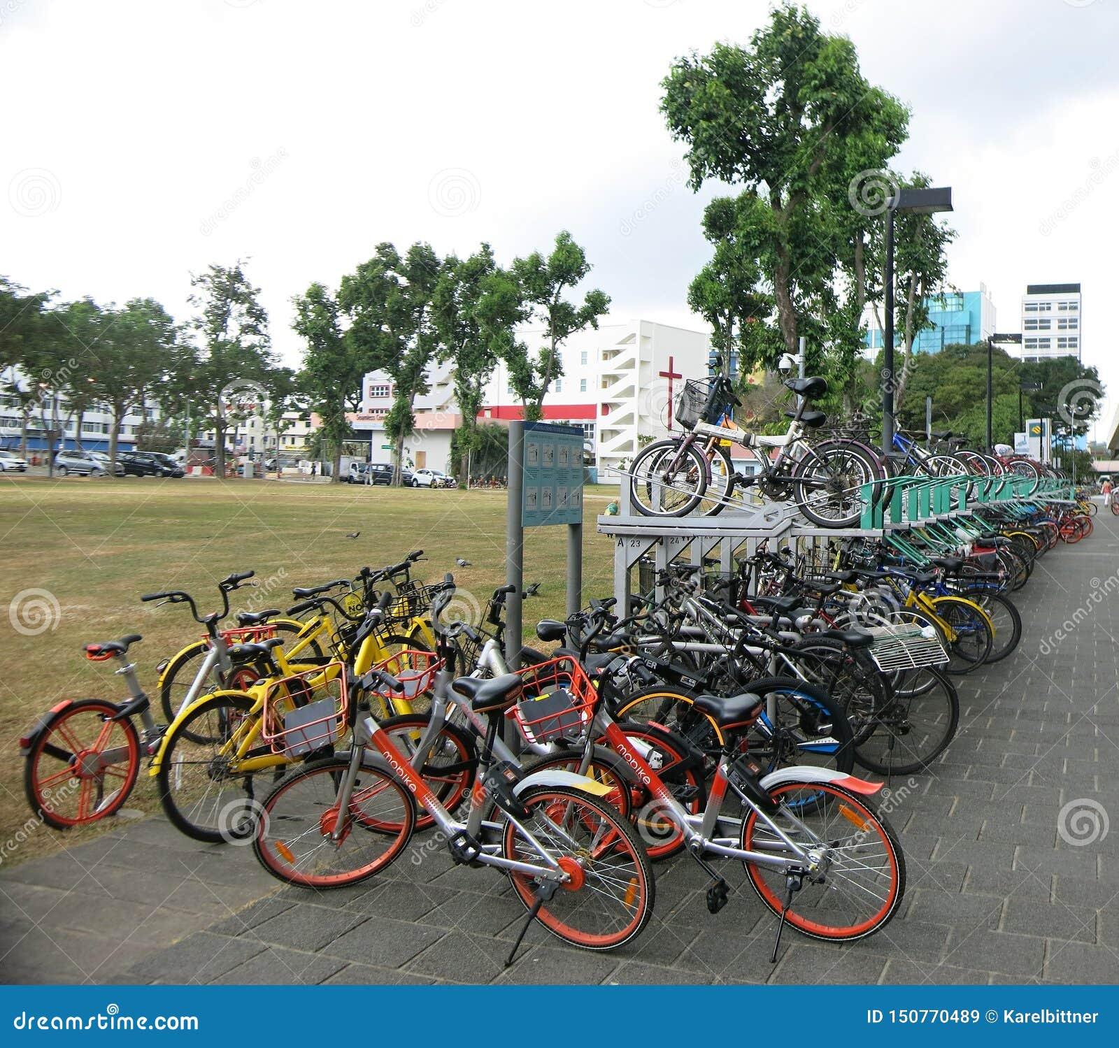 许多自行车停放在地铁 在楼层立场登上的轮子 路自行车混合物等待他们的所有者的 Bik