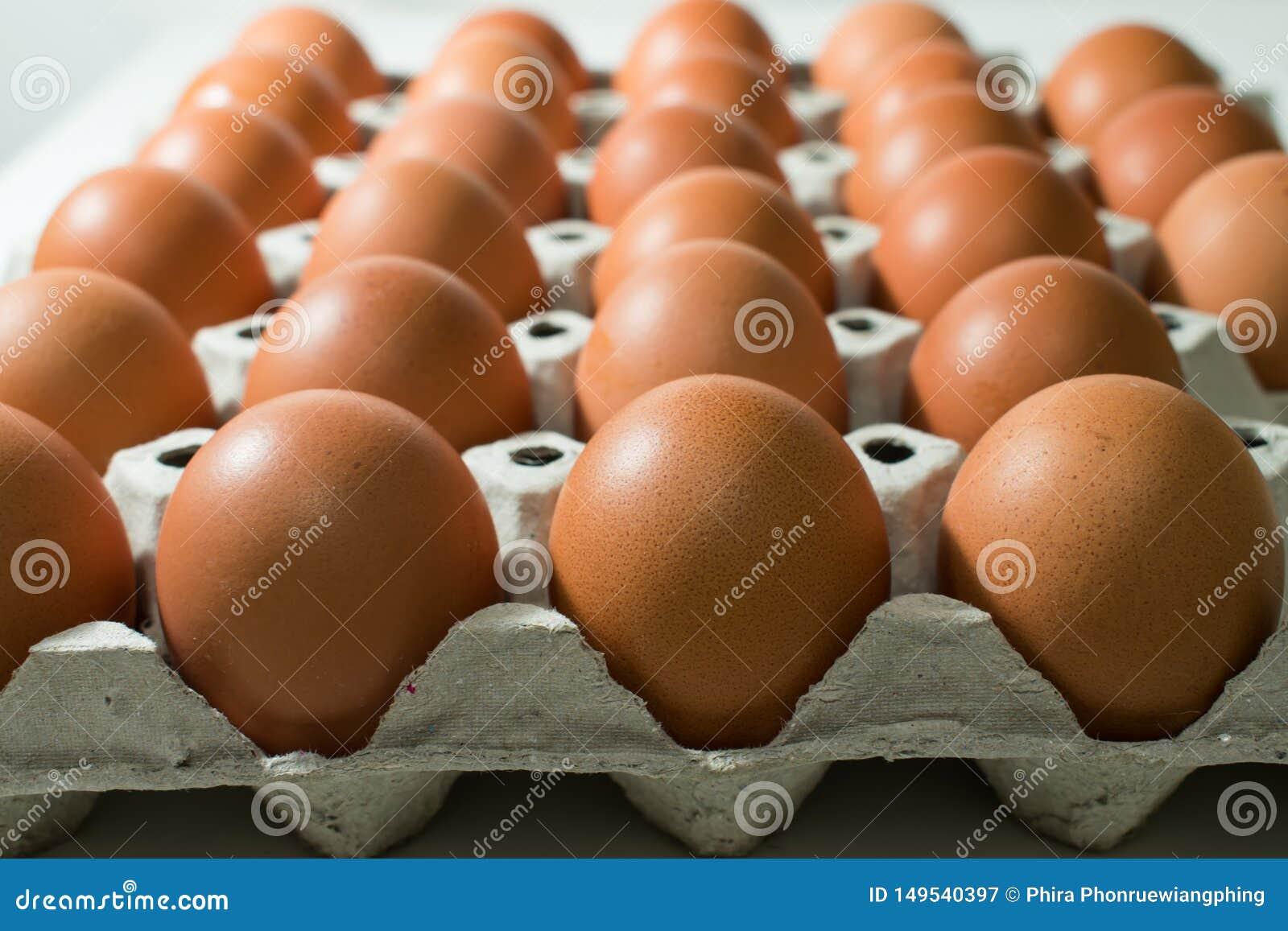 许多鸡蛋在盘子