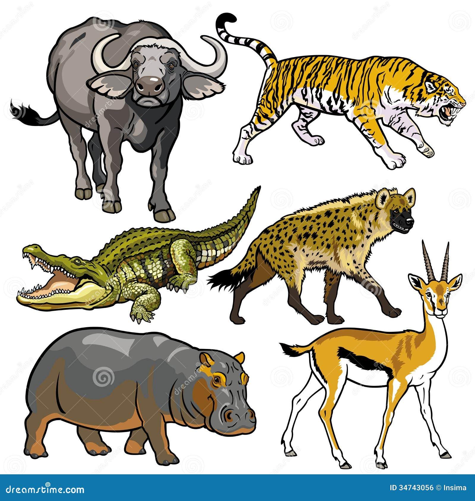 设置与非洲的野生动物