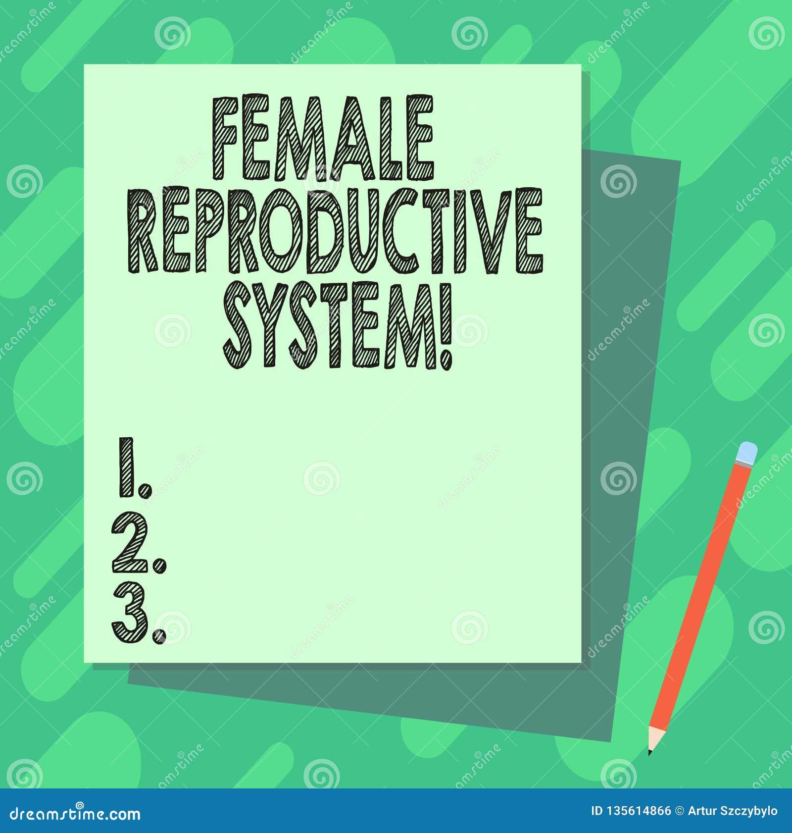 词文字文本女性生殖系统 负责任的企业概念在新的子孙堆的再生产