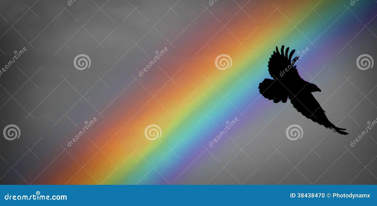 诺亚彩虹和掠夺
