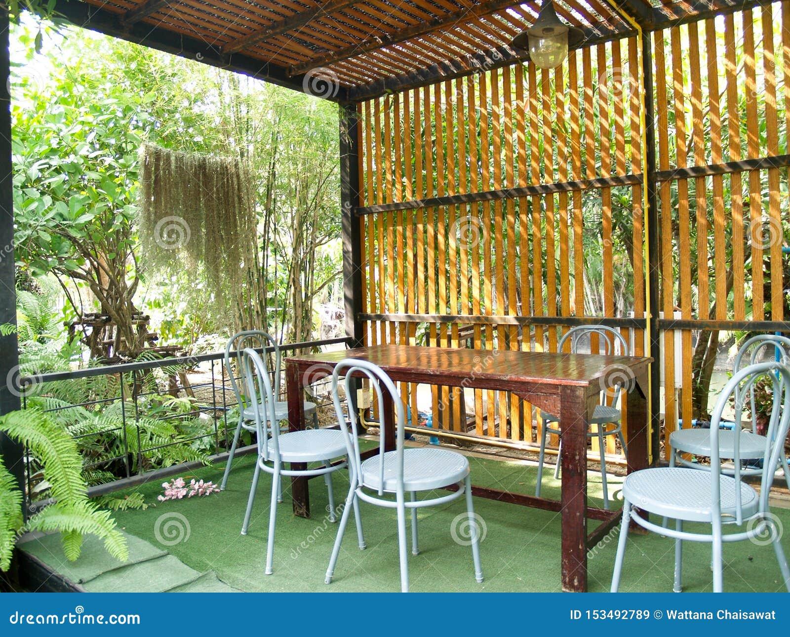 读书的一个安静的角落在庭院里和围拢由绿色树
