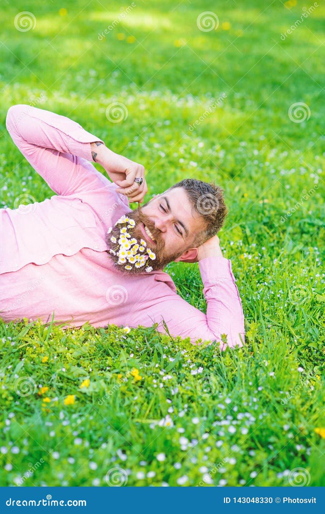 调情的人概念 有雏菊花束的人在胡子的扭转髭 有胡子的人在愉快的面孔享受自然 博若莱红葡萄酒