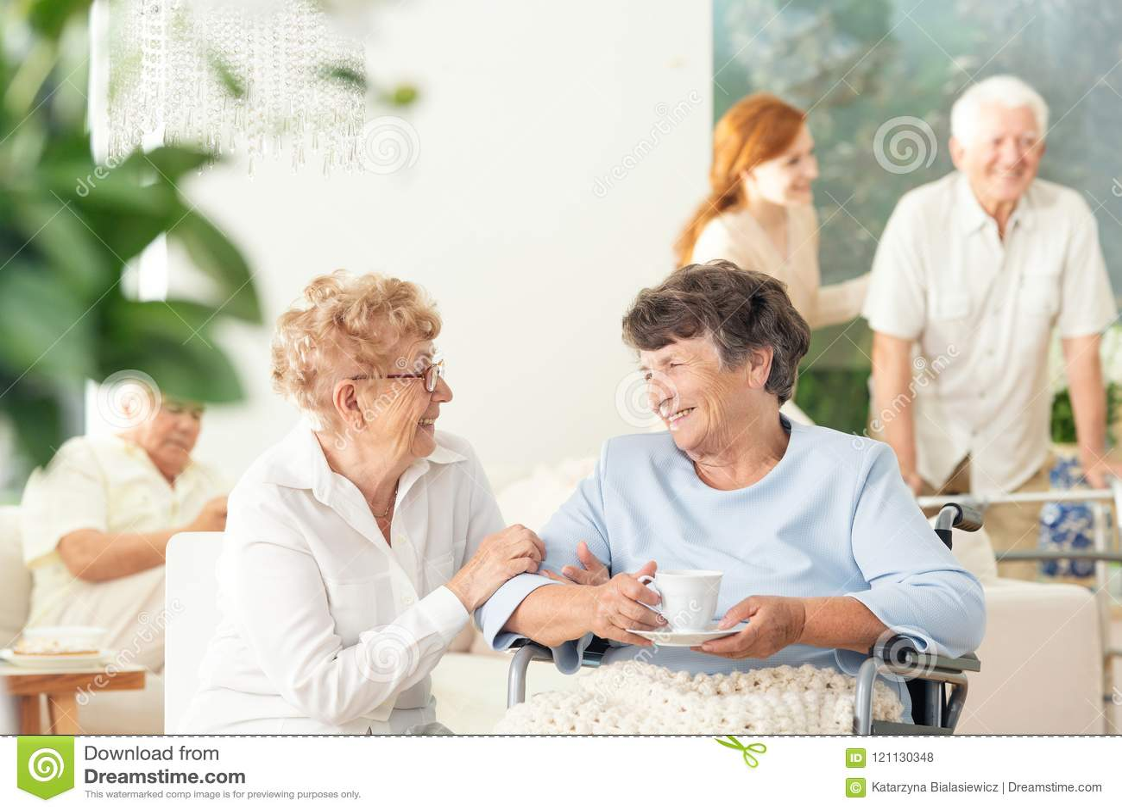 谈和握手的两名愉快的老年医学的妇女正面图