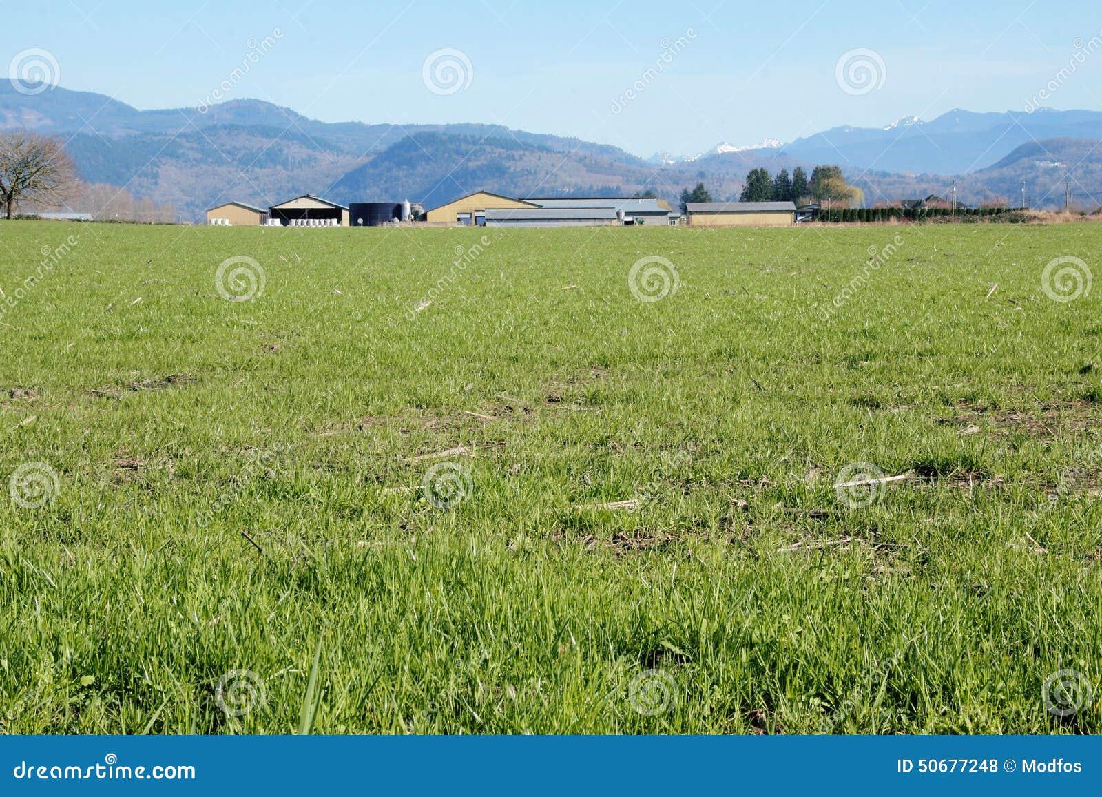 Download 谷农场和放牧地带 库存照片. 图片 包括有 产物, 成功, 有生产力, 农场, 横向, 现代, 绿色, 国内 - 50677248