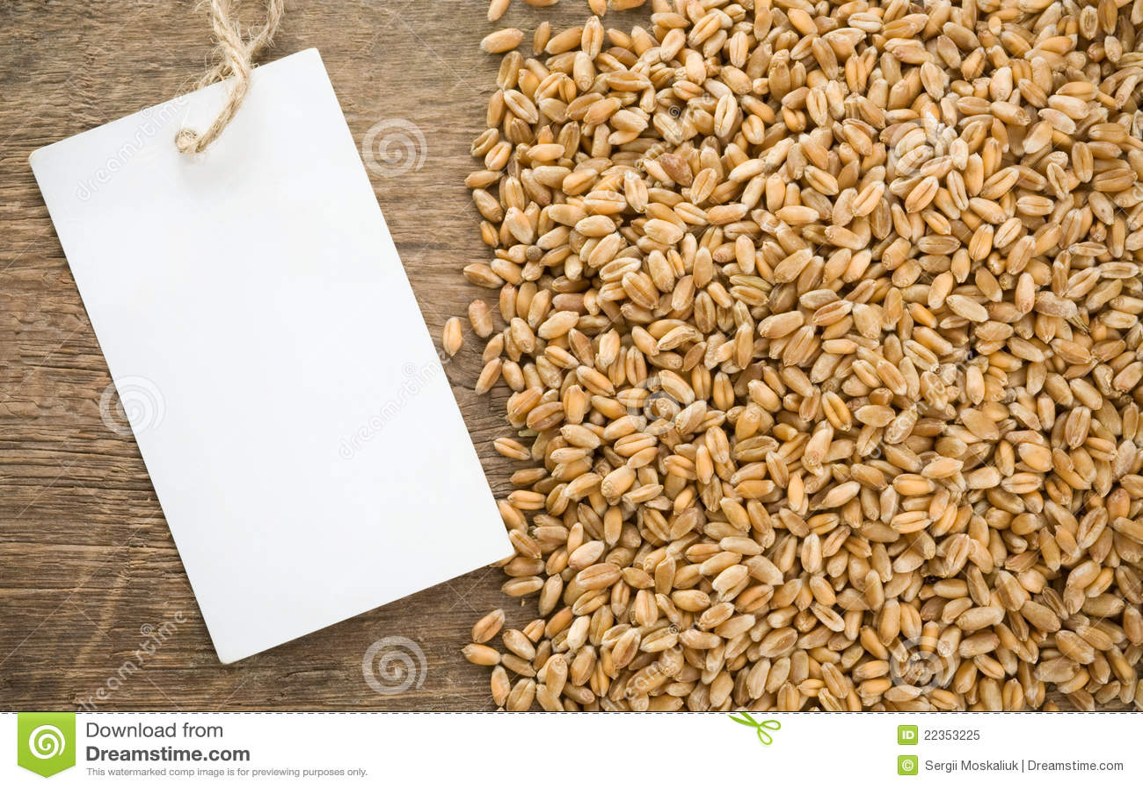 谷物价牌麦子
