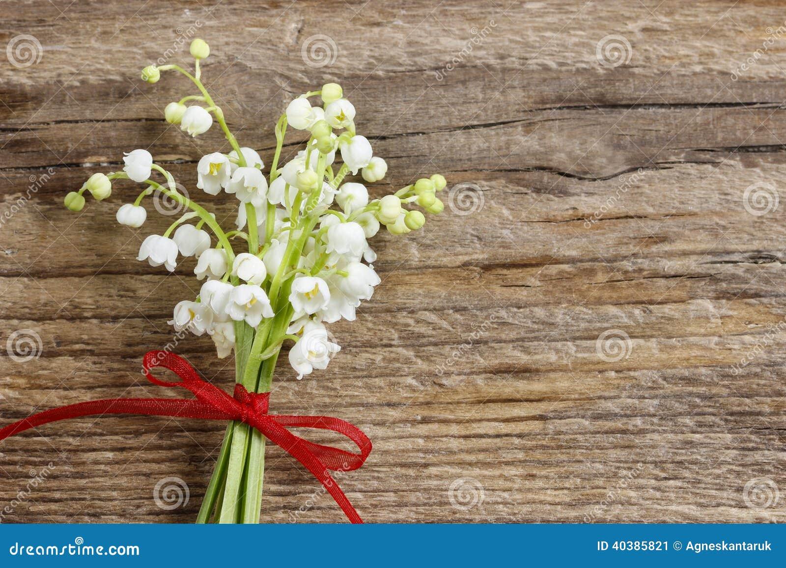 谷的Lilly在木背景开花。