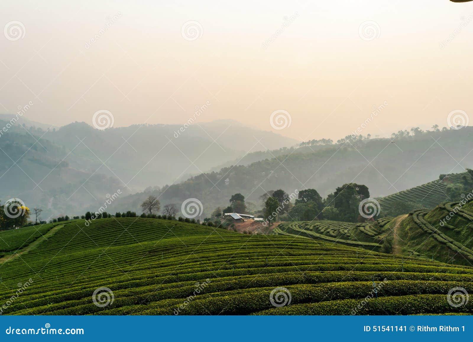 泰国山�^_从泰国的山.