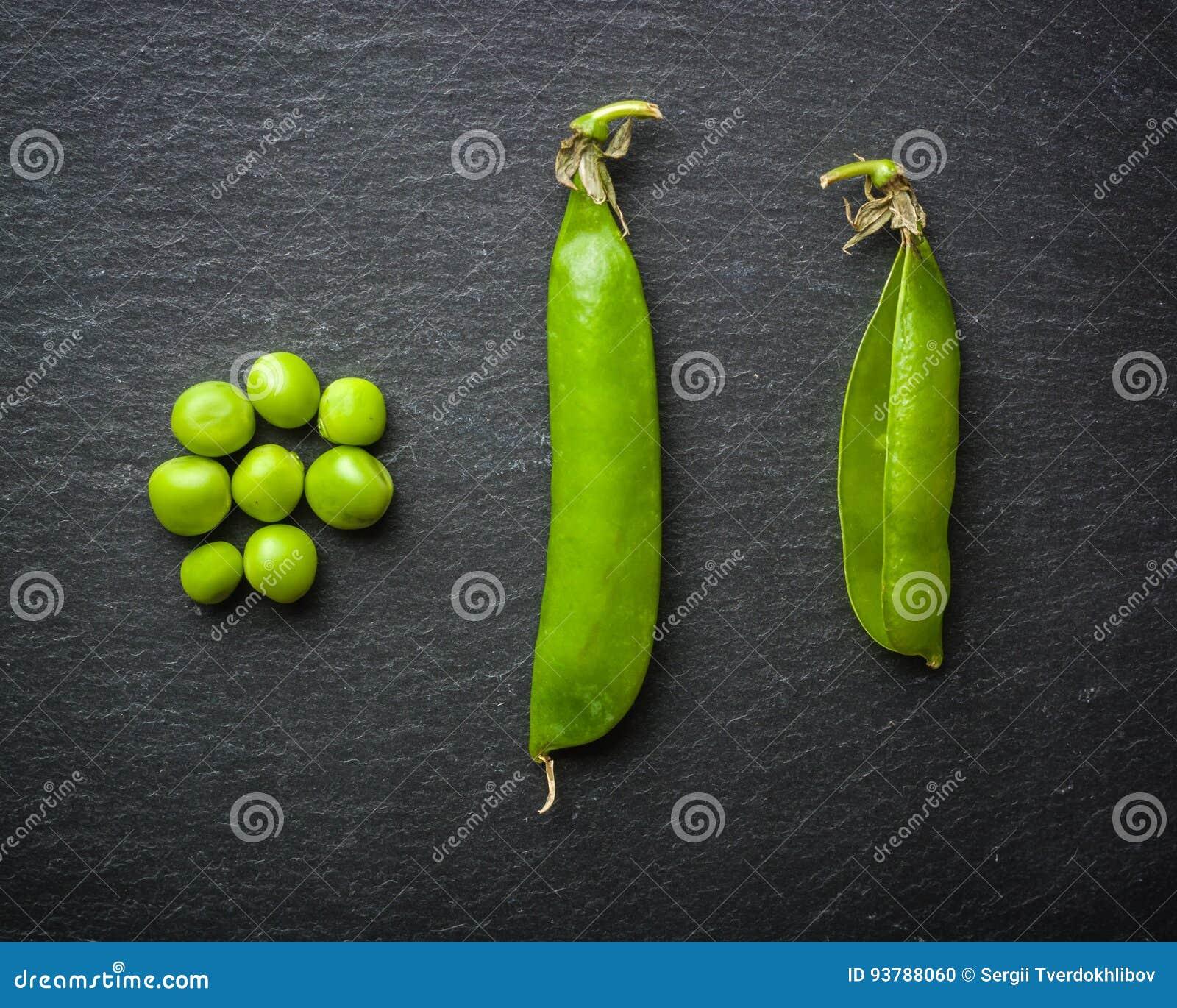 绿豆开放和闭合的药丸在黑石背景的 新鲜水果 收获 复制空间