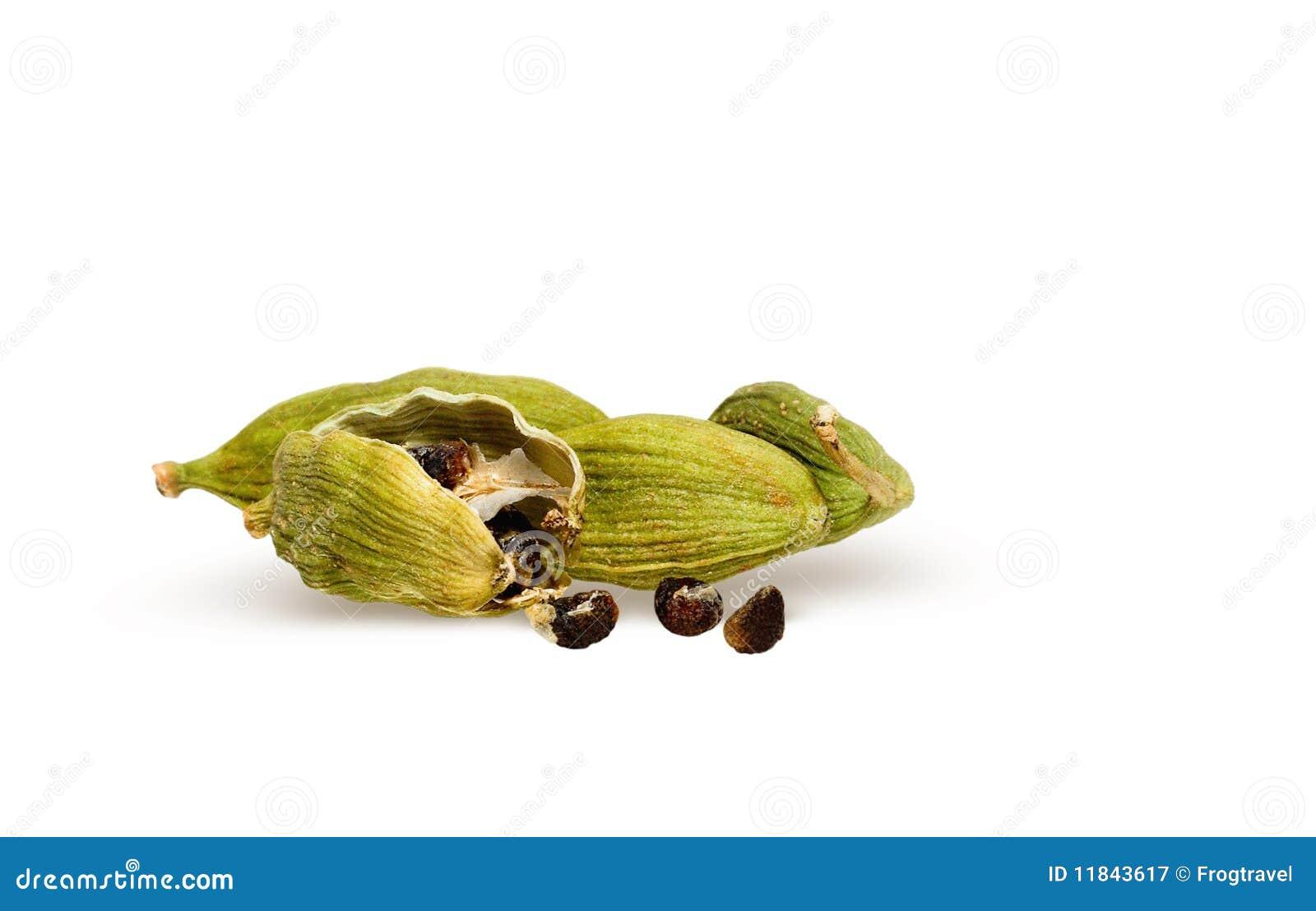 豆蔻果实荚