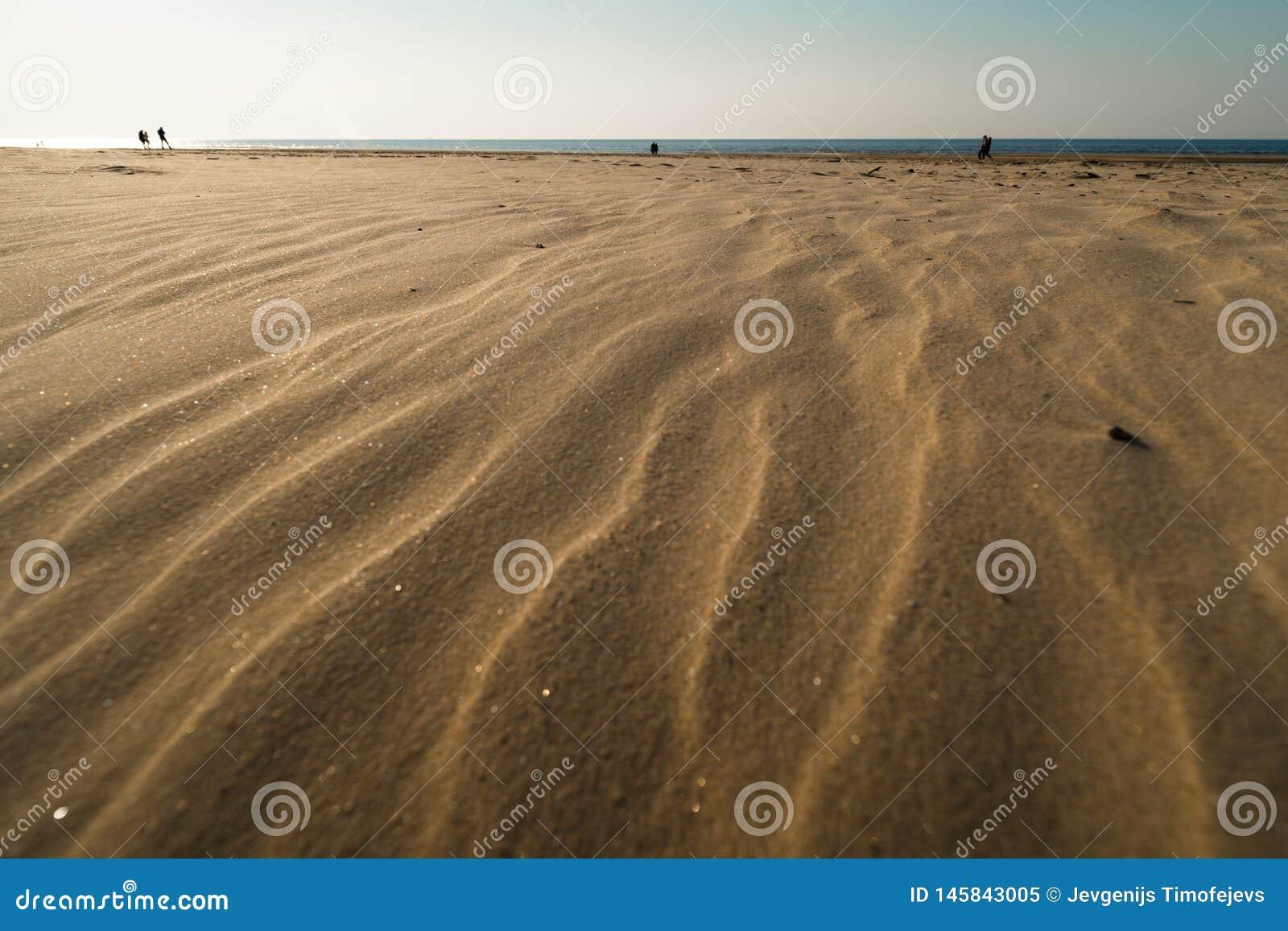 象织地不很细沙子-波罗的海与白色沙子的海湾海滩的点心在日落