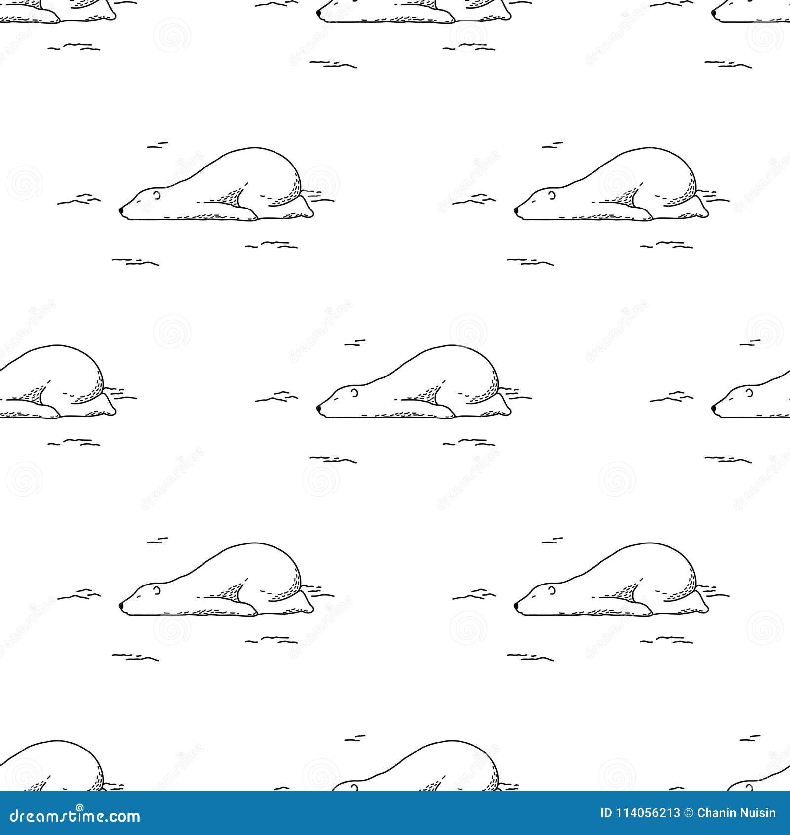 负担无缝的样式北极熊熊猫传染媒介被隔绝的睡眠女用连杉衬裤乱画墙纸背景