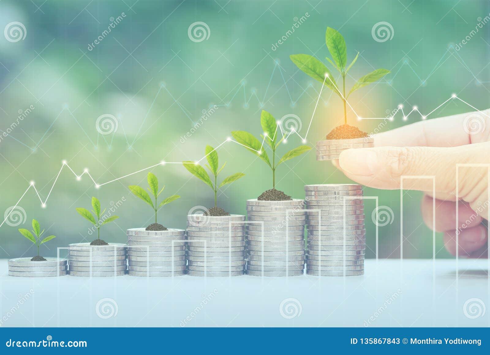 财务,妇女手在自然绿色背景、投资和事务的植物生长在堆的藏品硬币金钱和图表