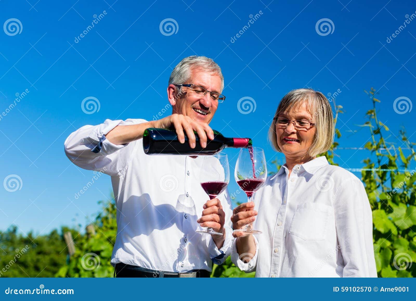 资深妇女和人饮用的酒在葡萄园里