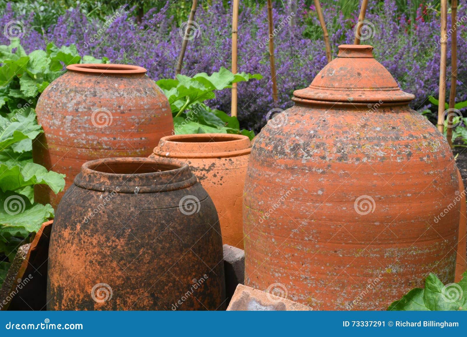 赤土陶器罐, Tintinhull庭院,萨默塞特,英国,英国