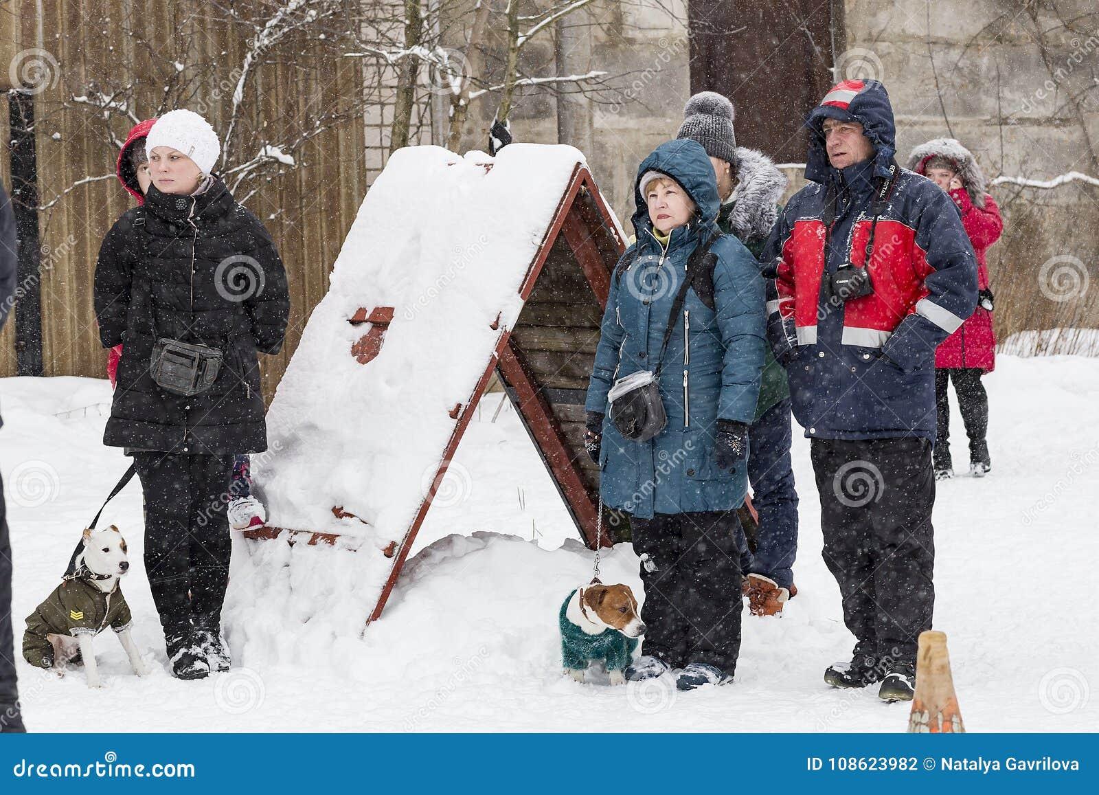 走与狗的人们在冬天,社论