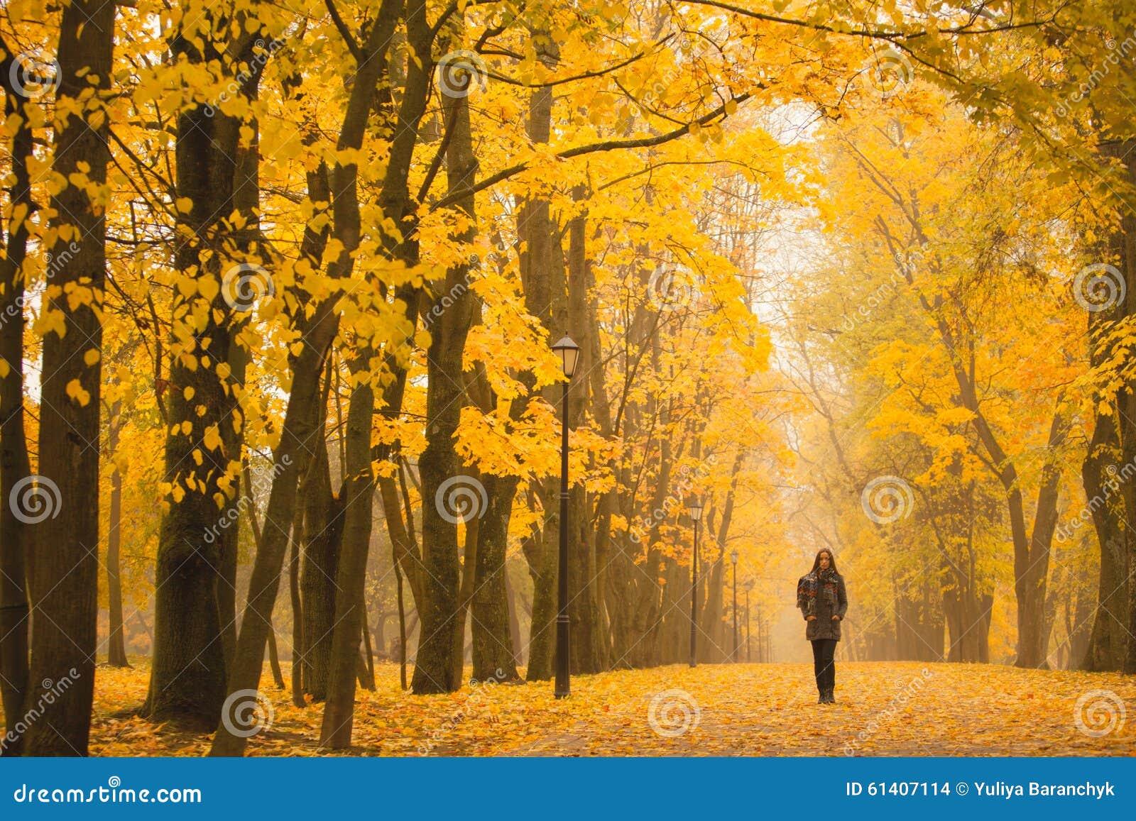 走在公园的孤独的妇女在一有雾的秋天天 孤独的妇女在秋天的享受自然风景