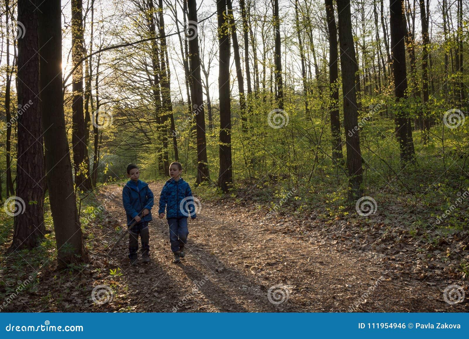 走在春天森林里的孩子