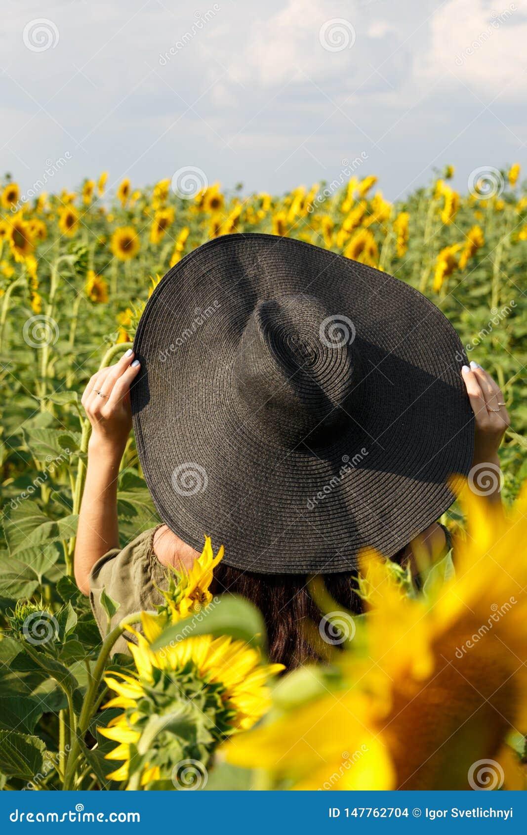 走在领域的年轻女人用向日葵 享受在向日葵的领域的美丽的少女自然在日落 ??