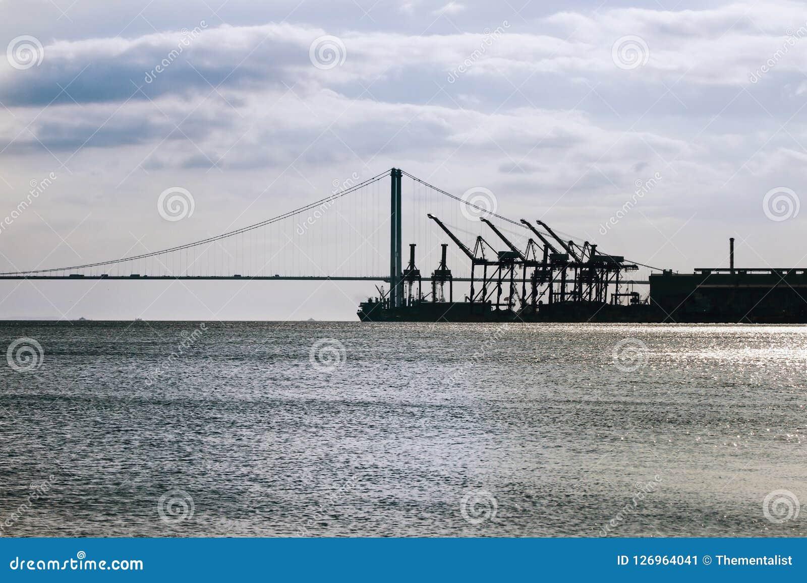 起重机剪影在桥梁和船坞的