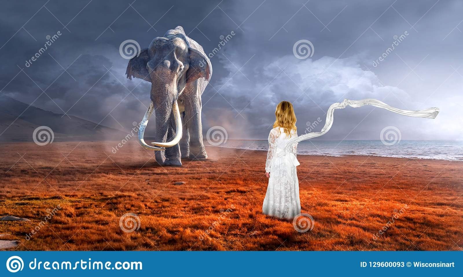 超现实的大象,野生生物,想象力,女孩