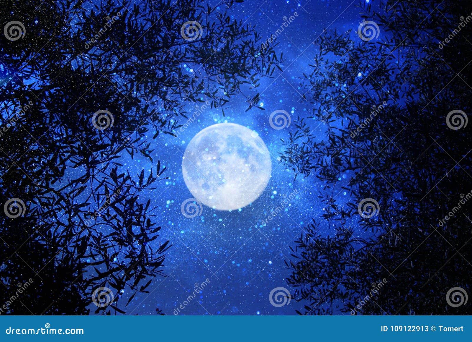 超现实的幻想概念-与星的满月在夜空背景中闪烁