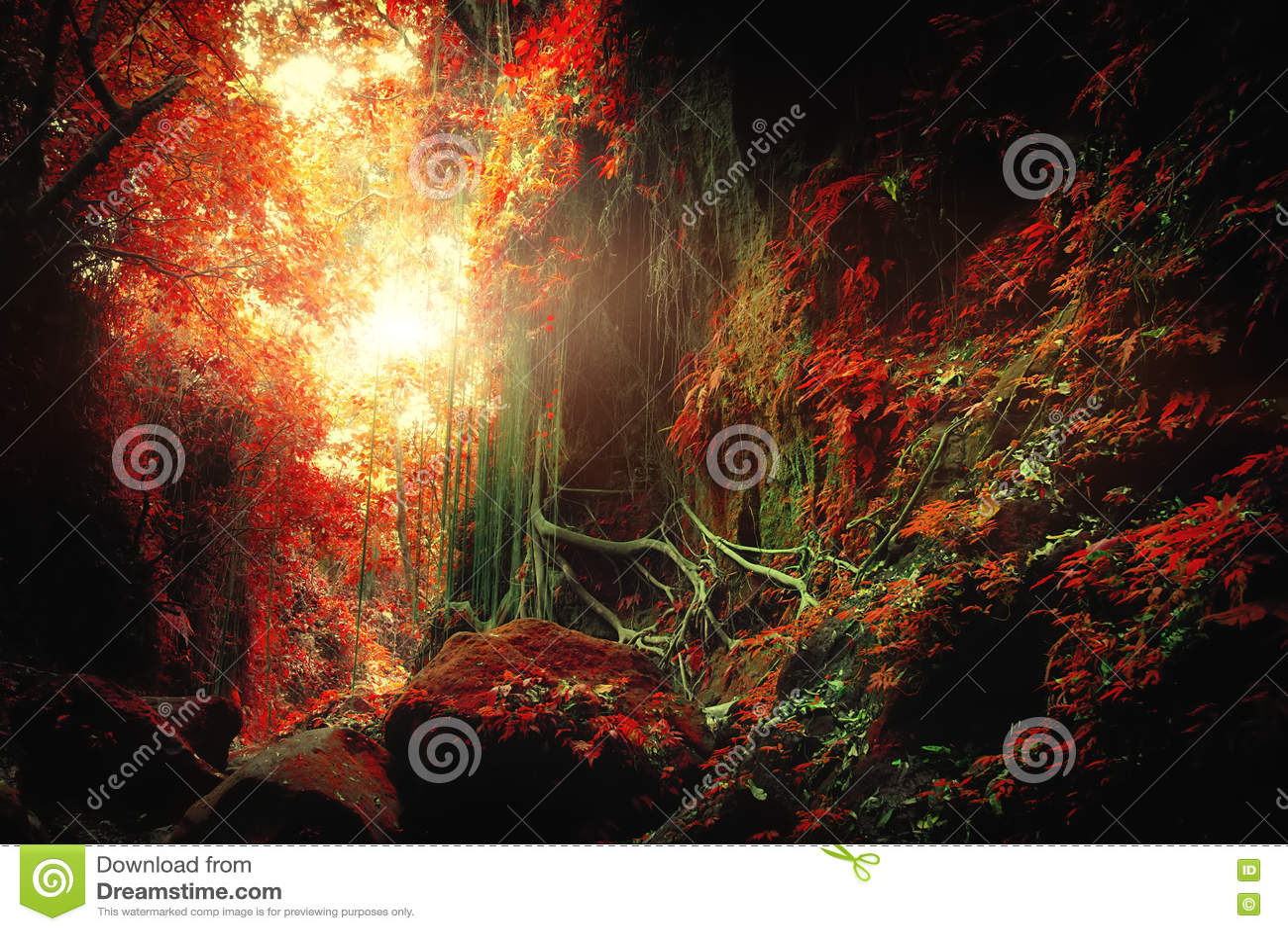 超现实的颜色的幻想热带密林森林