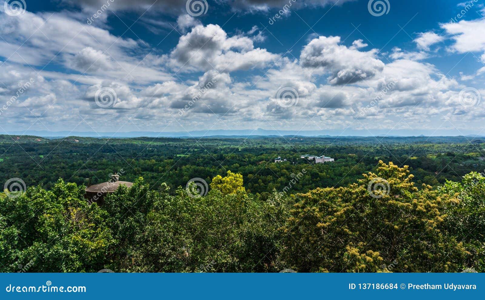 超级多云天空在森林里