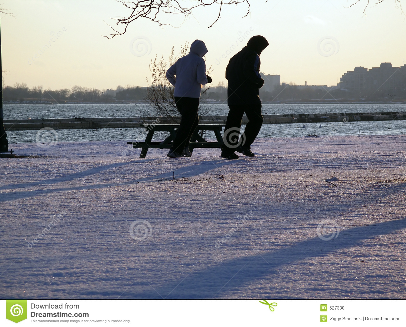 Download 跑步的冬天 库存照片. 图片 包括有 多伦多, 运行, 体育运动, 人们, 遗弃情人的, 活动家, 凹凸部, 妇女 - 527330