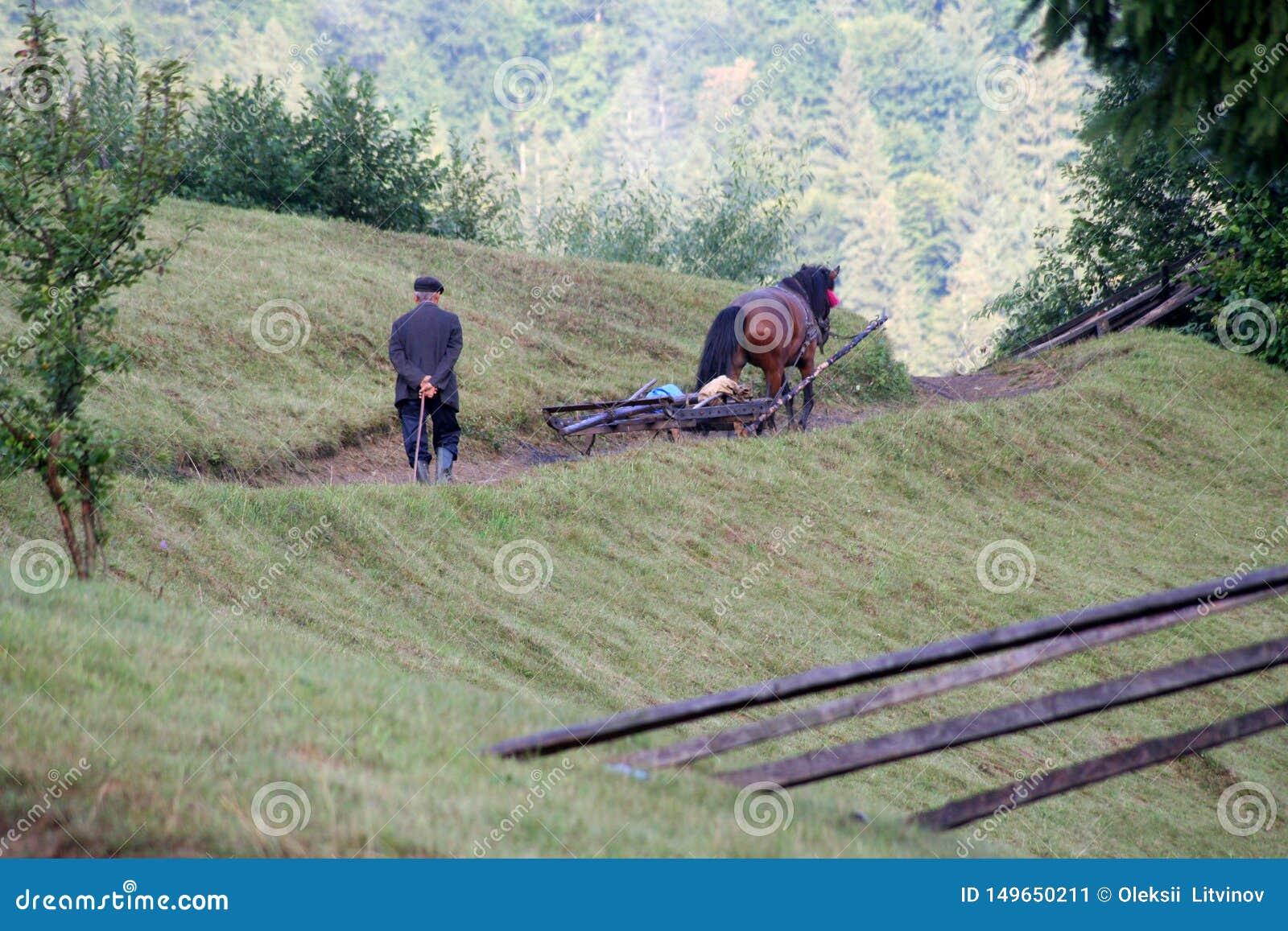 跟随在山的ld人一个马推车