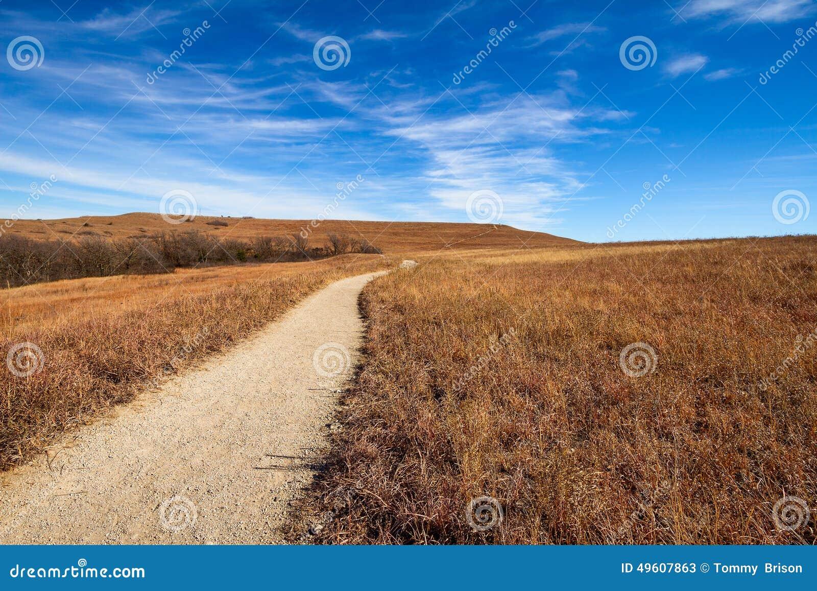 路到大草原里