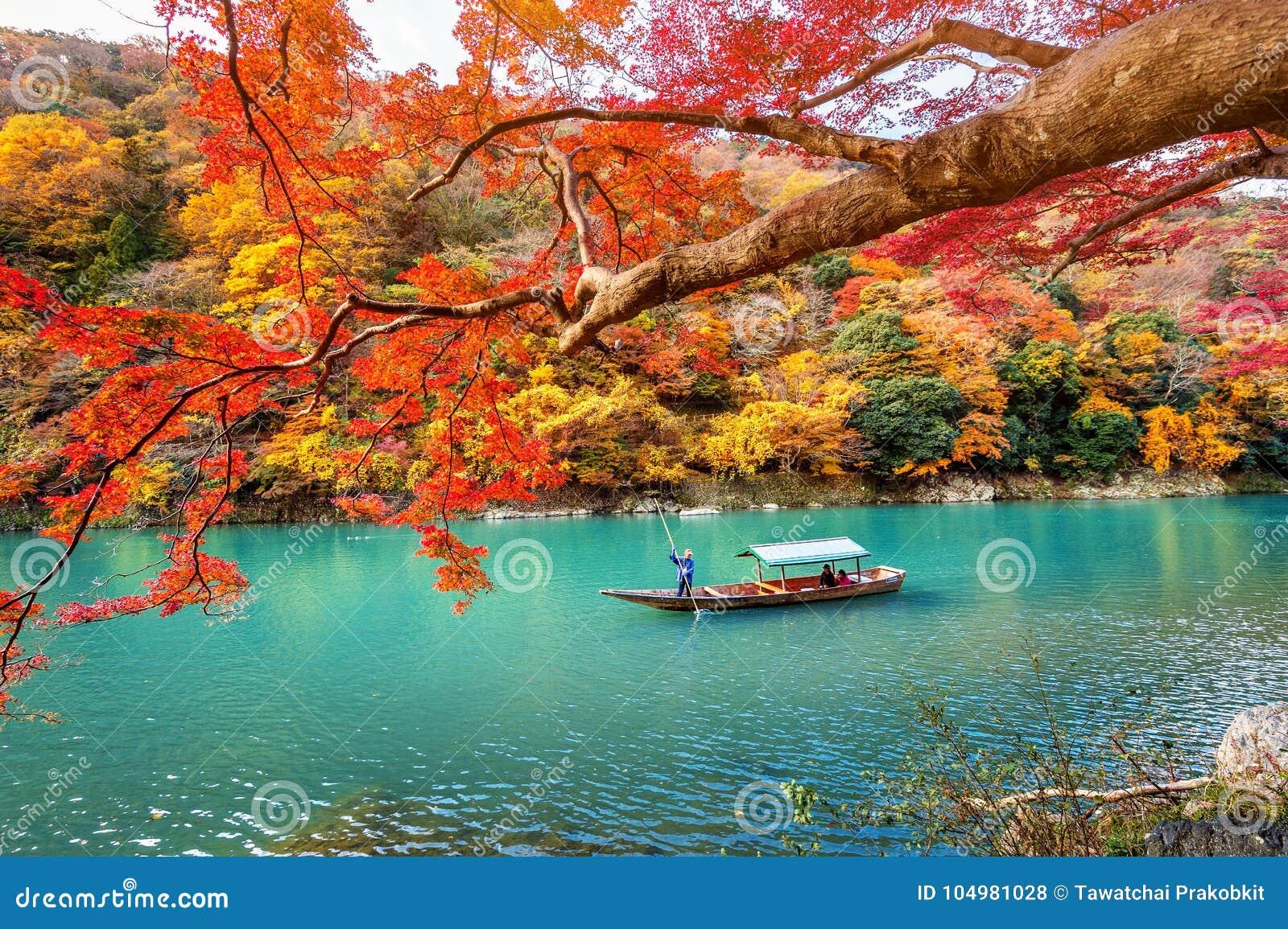 踢小船的船员在河 在秋天季节的Arashiyama沿河在京都,日本