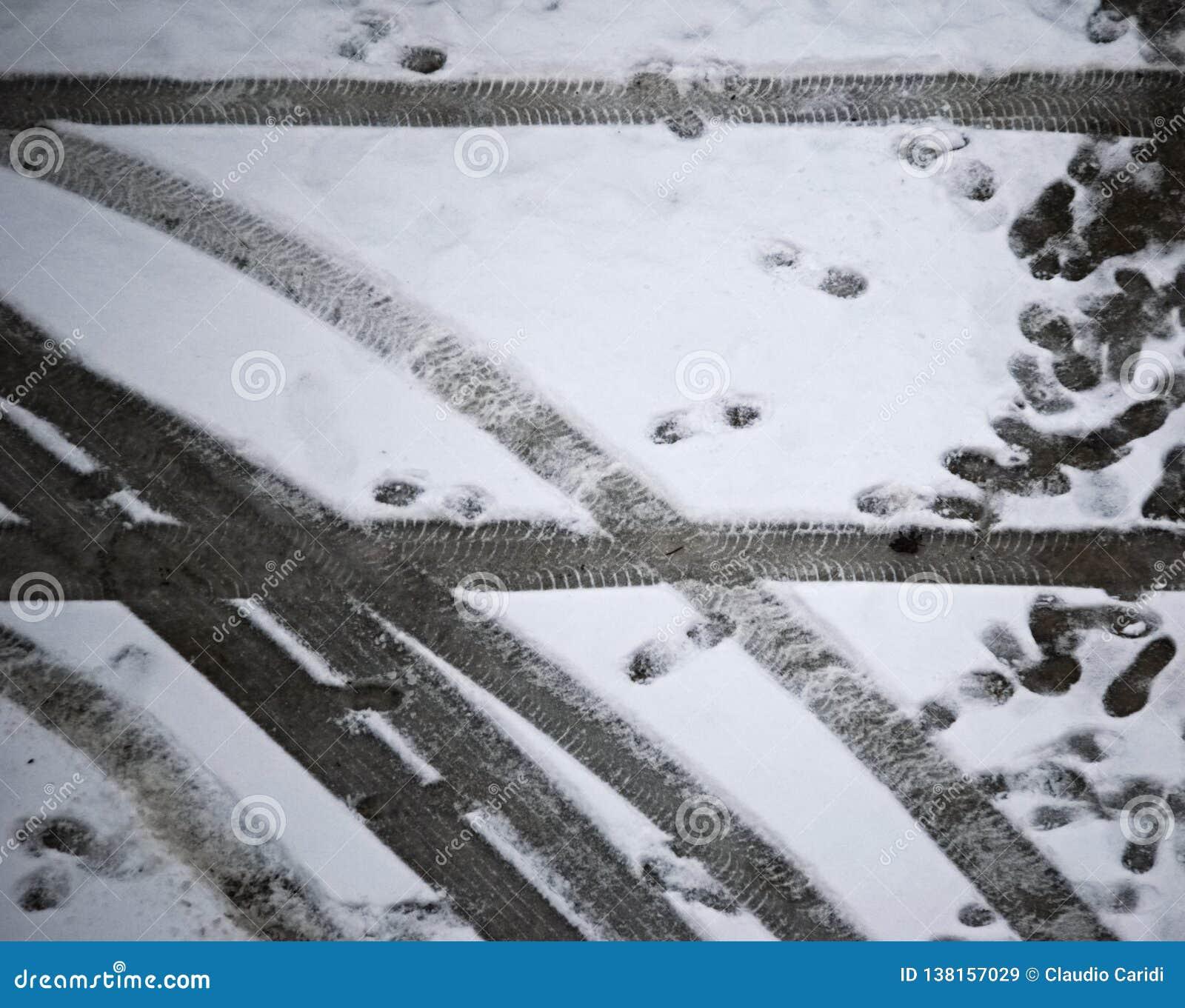 车轮脚印和踪影在雪地面的