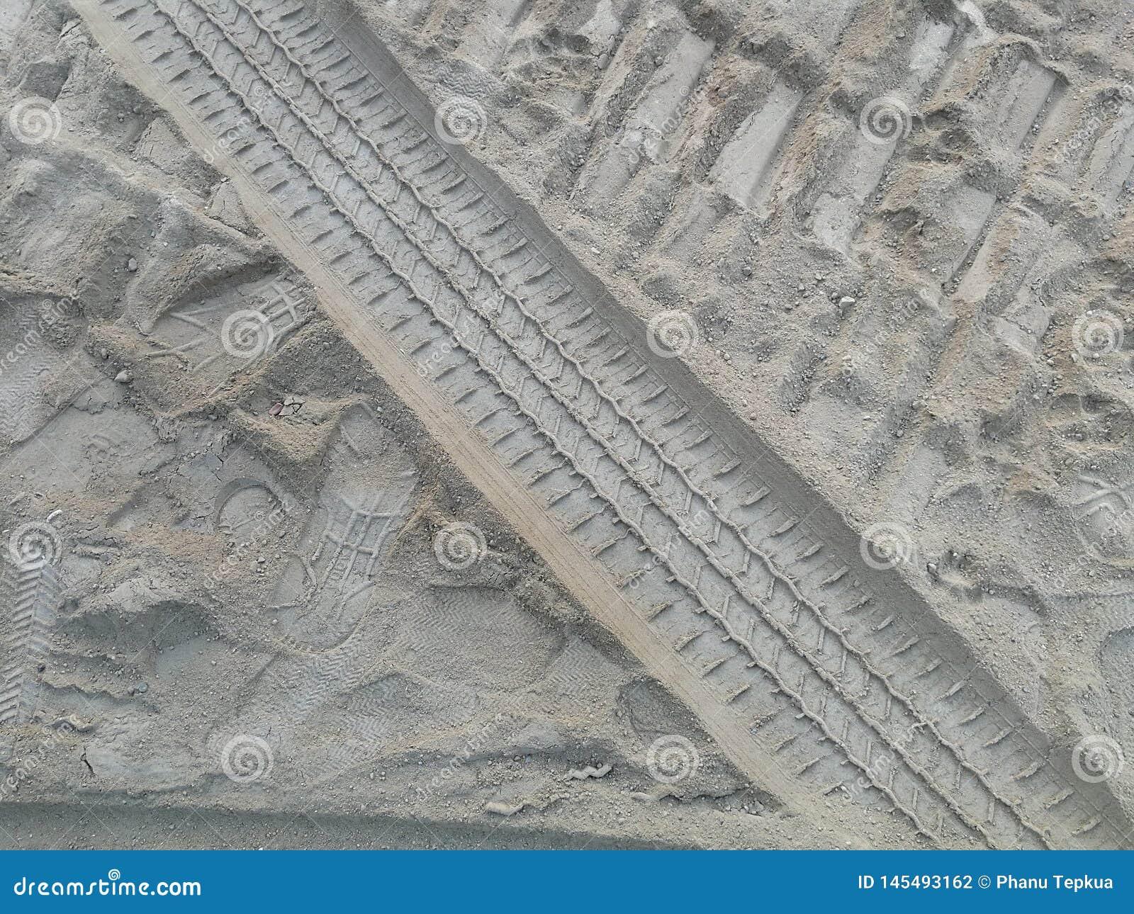 轮子人和狗轨道和脚印在沙子