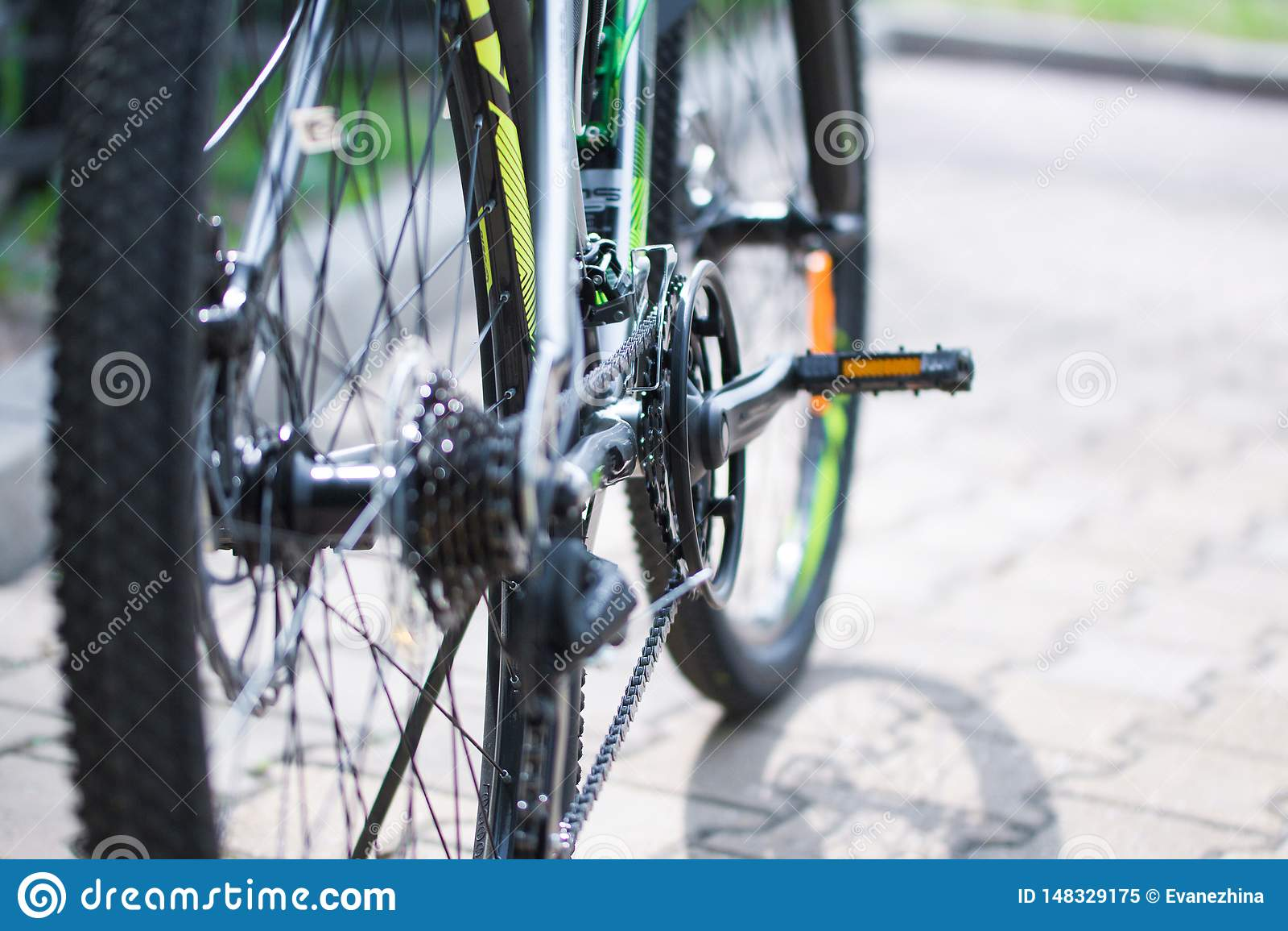 轮子,脚蹬,自行车链子,现代山自行车的速度开关机制  r ??