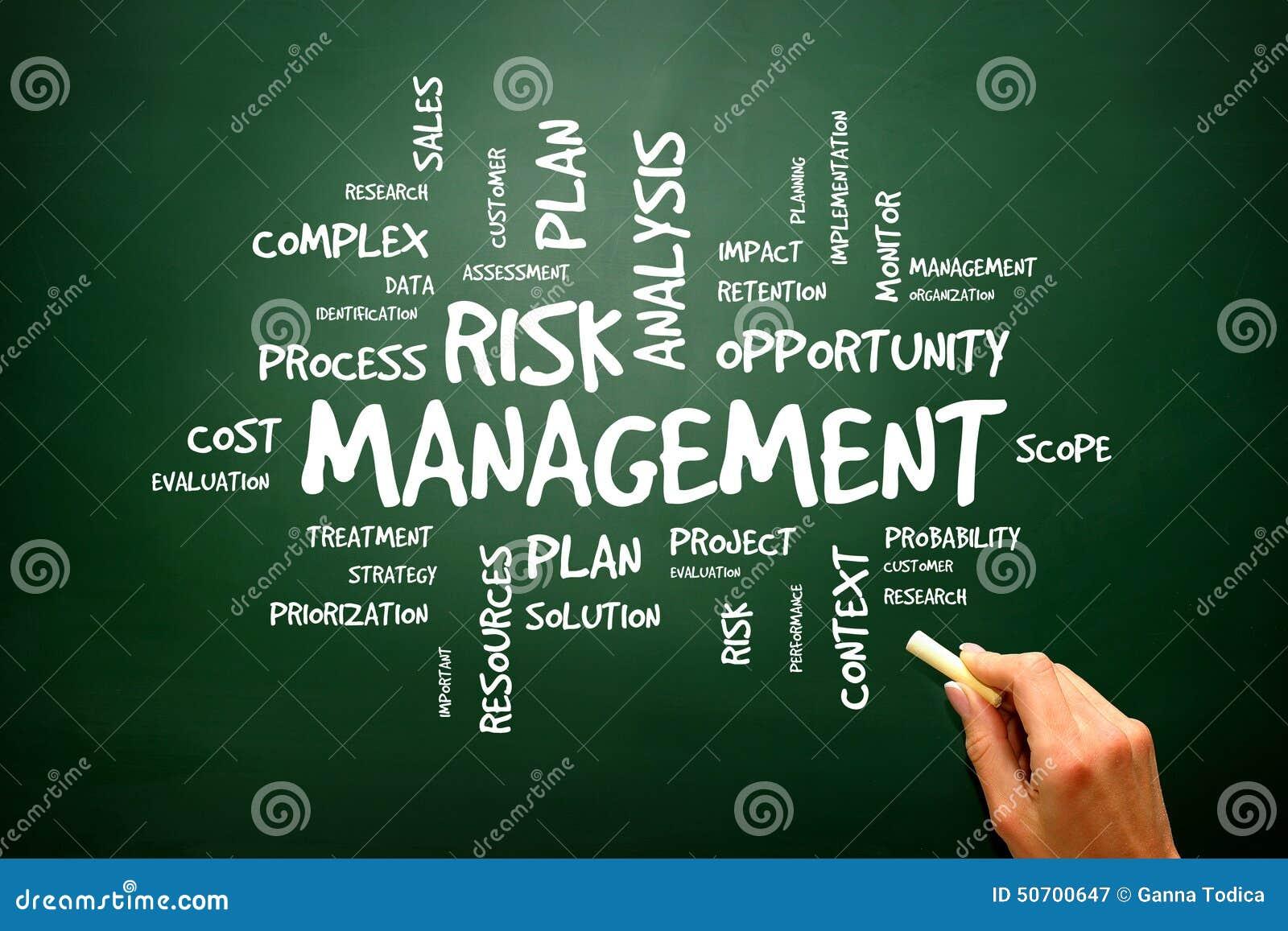 辨认,评估和对待风险的风险管理展示