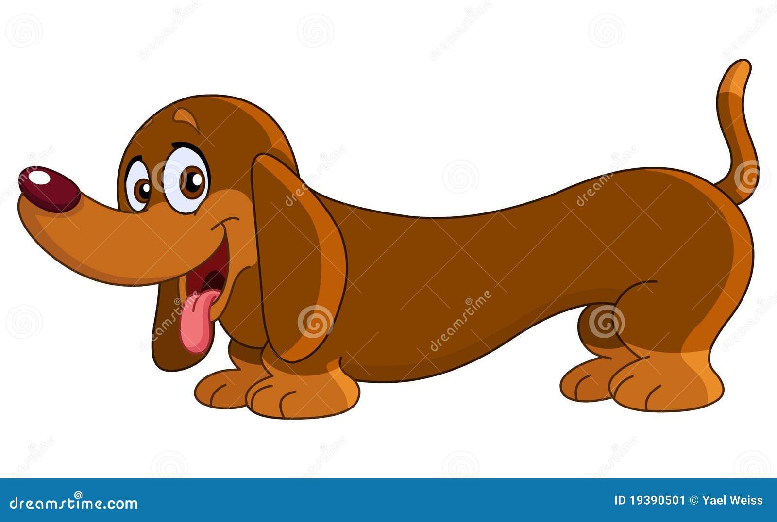 达克斯猎犬狗
