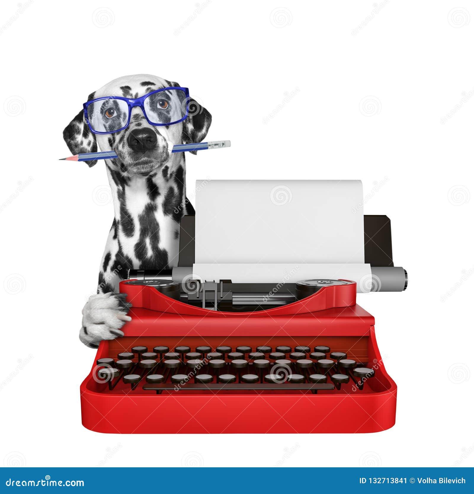 达尔马希亚狗在控制台打字机键盘键入 查出在白色