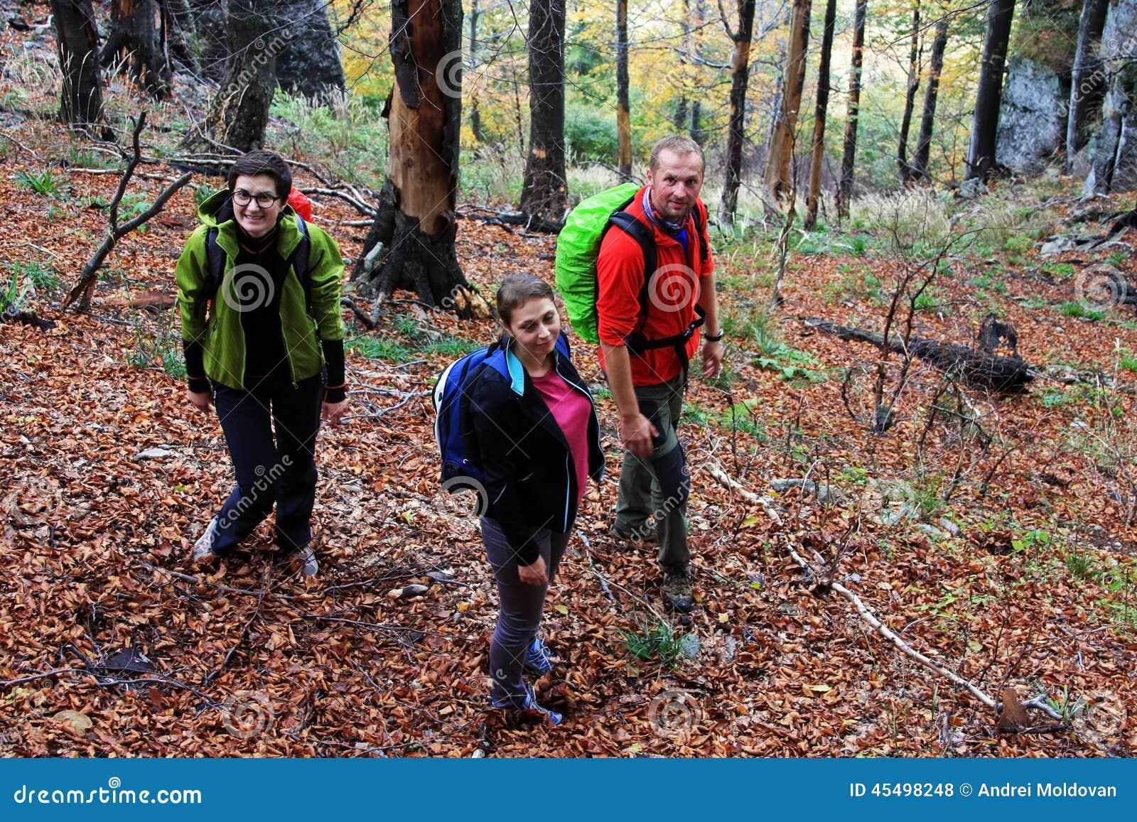 迁徙通过森林的三个朋友