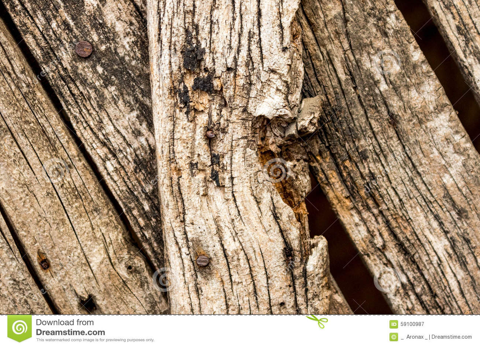 年迈的木篱芭
