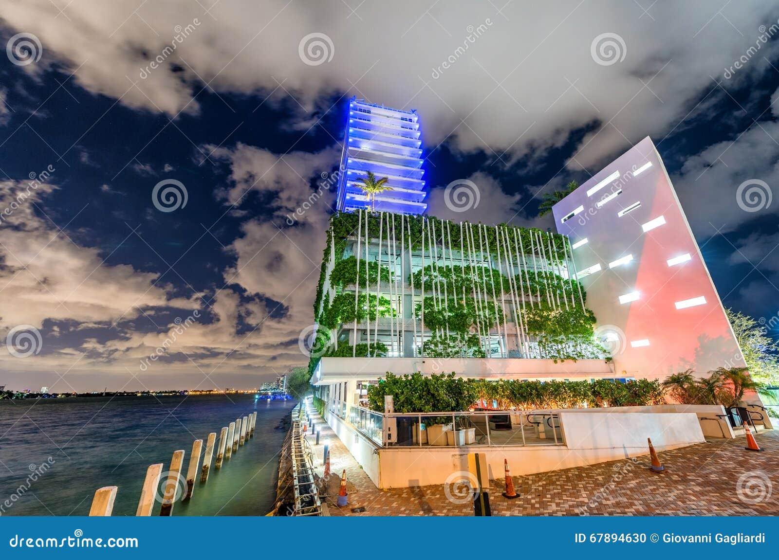 迈阿密大厦在晚上 美好的城市地平线