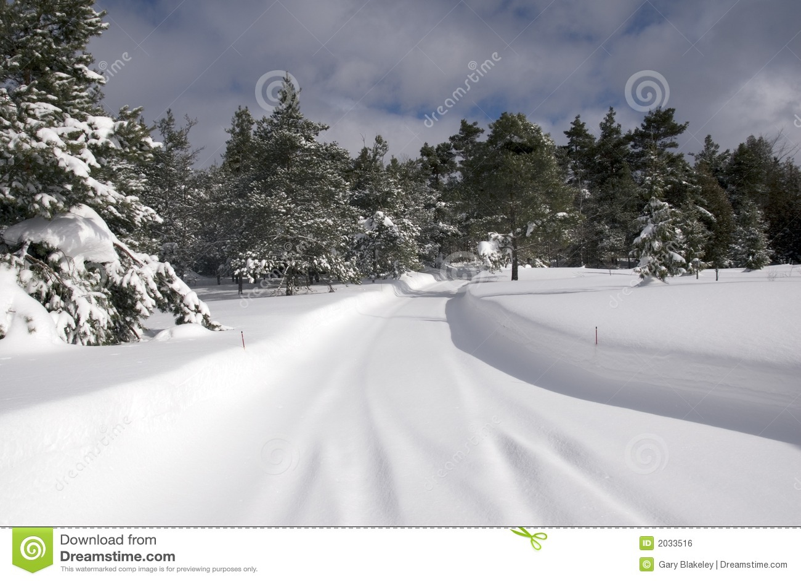 运输路线雪