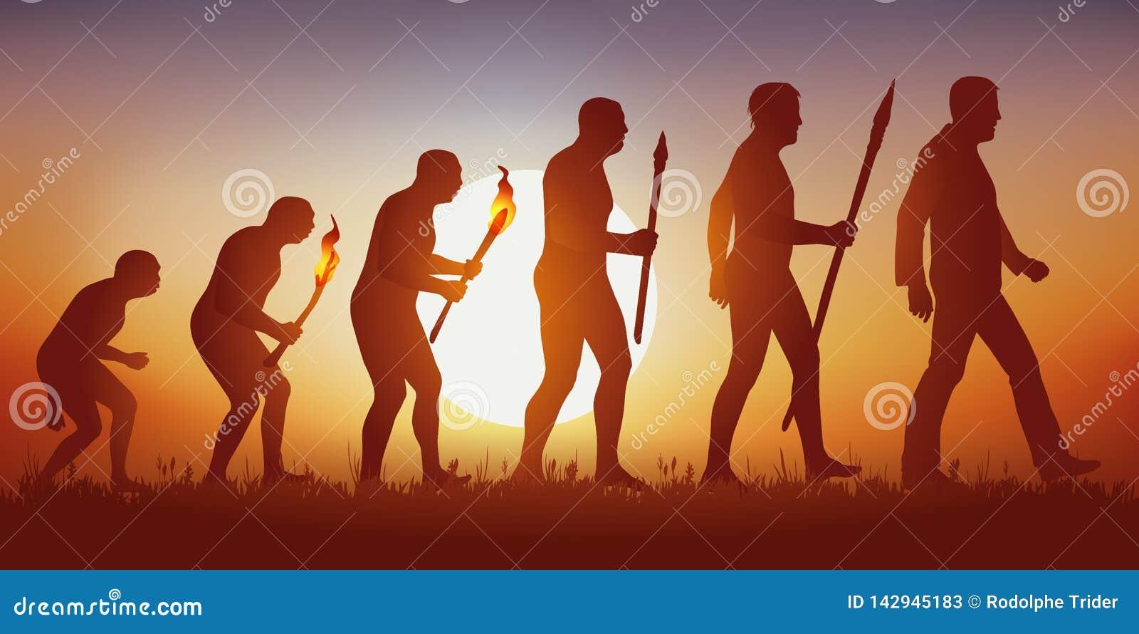 进化论达尔文人的剪影的
