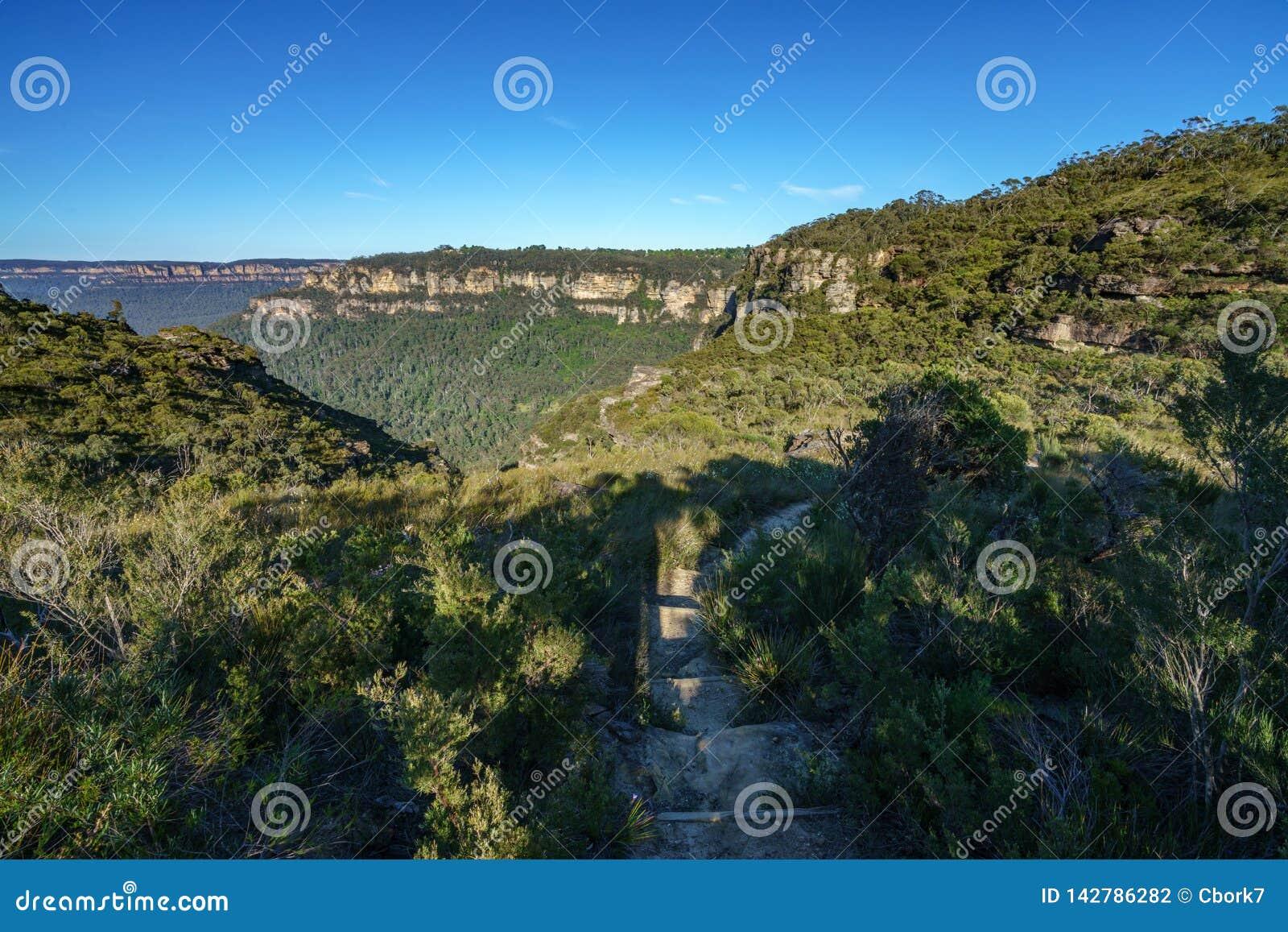 远足盛大clifftop步行,蓝色山,澳大利亚1
