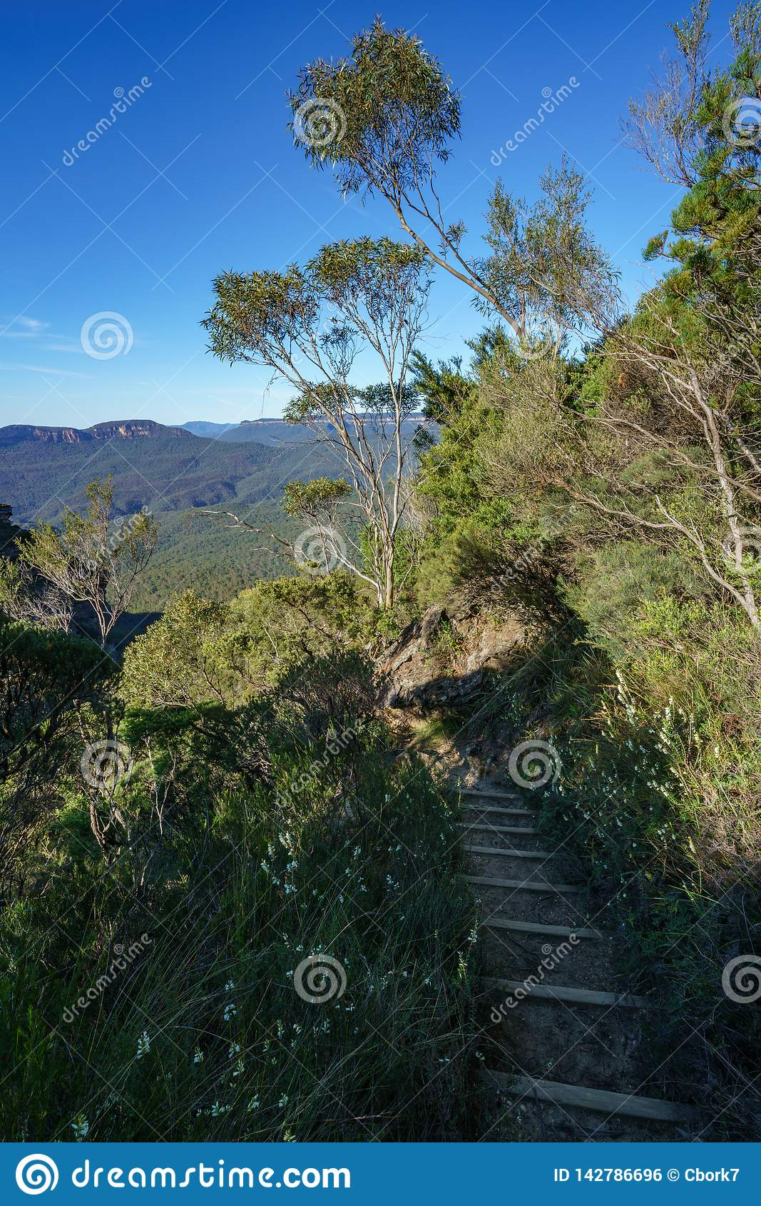 远足盛大clifftop步行,蓝色山,澳大利亚7