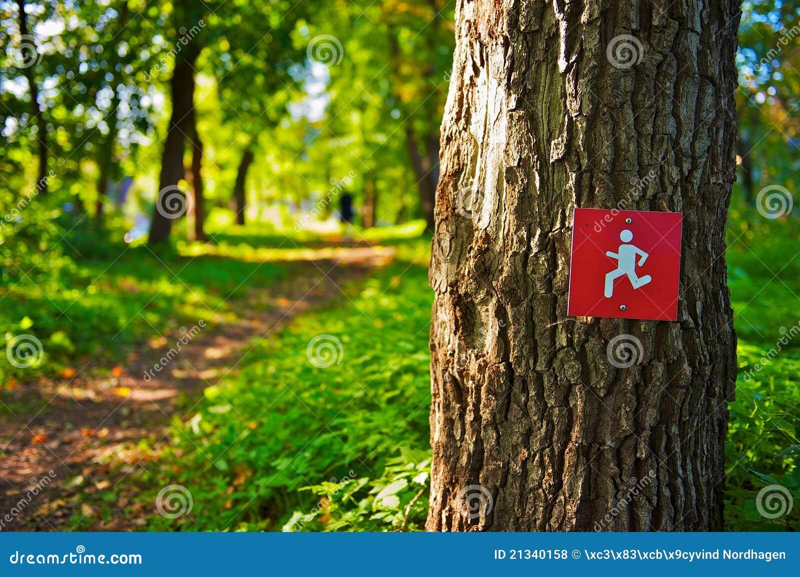 连续符号线索结构树