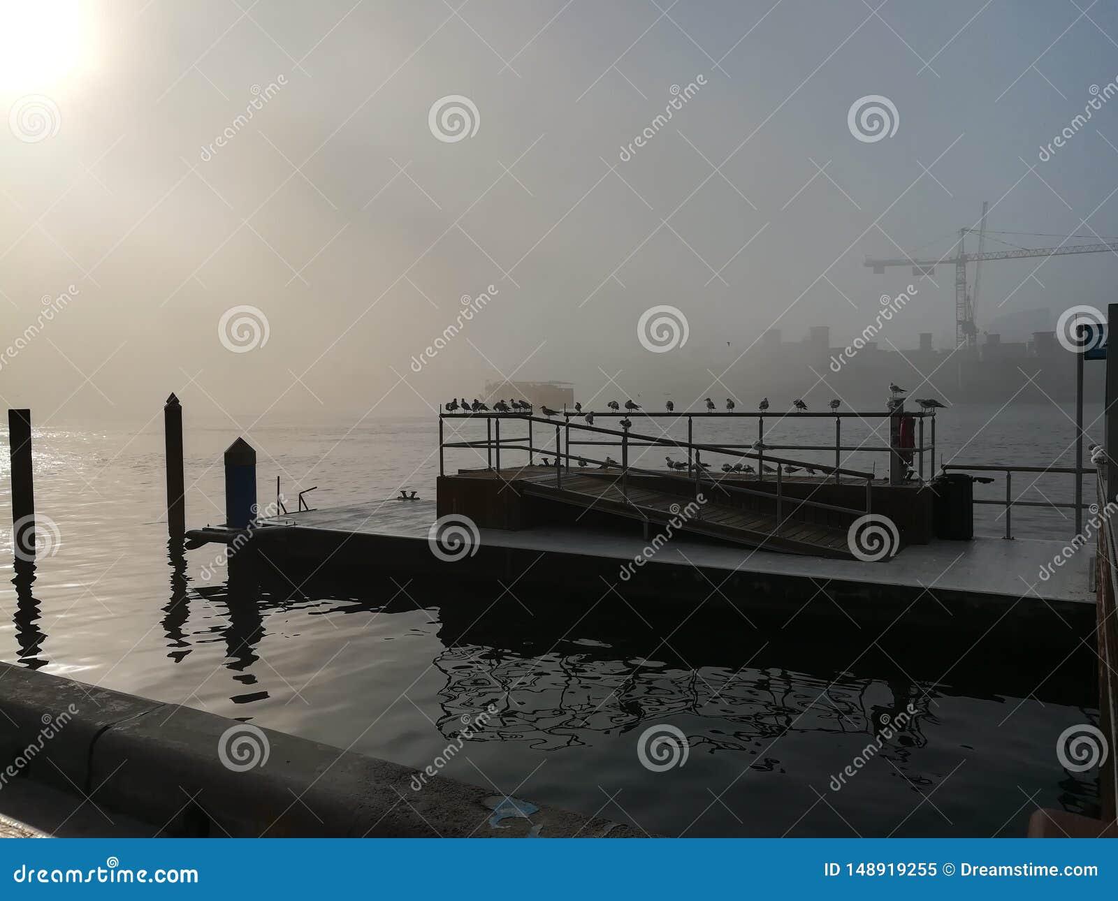 迪拜河码头